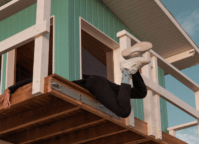 Person hanging with the feet out of a tree house